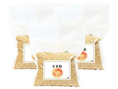 玄米麹1kg×3袋 乾燥品 塩糀レシピ付き 日本製