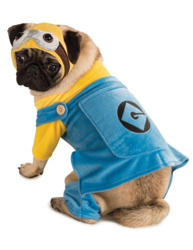 Halloween Costumes Item - Cat & Dog Costume Minion Small