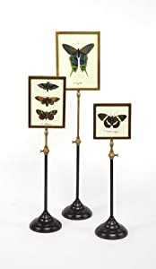 Two's Company Telescopic Vision Double Sided Photo Frames with Butterfly Insert on Telescoping Pole, Set of 3