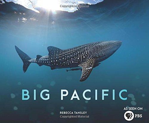 Book Cover: Big Pacific: Passionate, Voracious, Mysterious, Violent