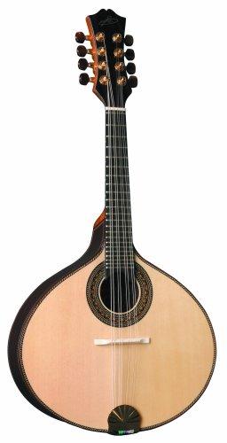 Acoustic Electric Mandolin
