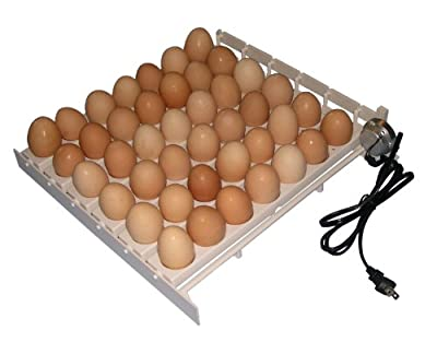 Automatic Egg Turner White