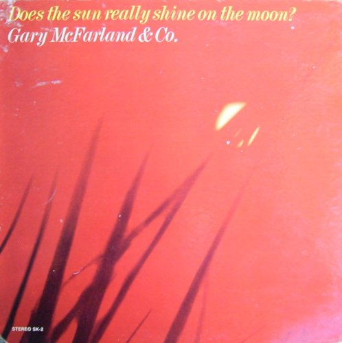 Does the Sun Really Shine on the Moon? [Vinyl LP] [Schallplatte]