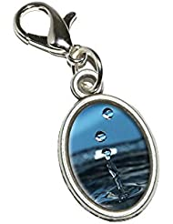 Graphics And More Drop Of Water - Droplets Rain Raining Antiqued Bracelet Pendant Zipper Pull Oval Charm With...