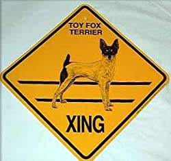 Toy Fox Terrier - Xing Sign