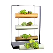 Living Art Vertical Garden Succulent Cactus Small Plants Herb Planting Cylinder System Unique Gift Decor