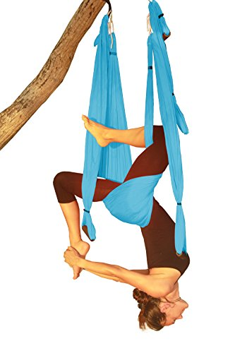 Wing Yoga Swing - Inversion Swing with Daisy Chain - Light Blue