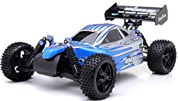 1/10 2.4 Ghz Exceed Rc Electric Sun Fire Rtr Off Road Buggy (Blue)