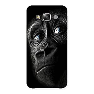 Stylish King Kong Blue Eyes Back Case Cover for Galaxy E7