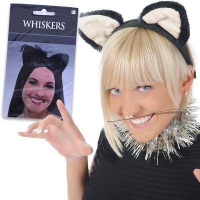 Animal Whiskers