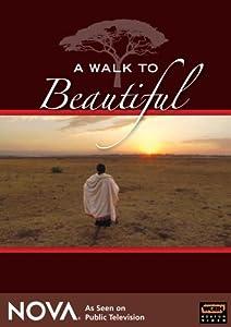 A Walk To Beautiful - NOVA