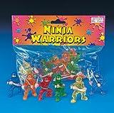 12 pc Toy Ninja Warriors