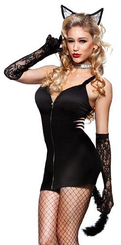 Bad Kitty Adult Costume