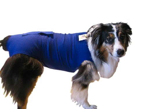 Surgi Snuggly E Collar Alternative, Created By A Veterinarian Specifically to Fit Your Dog, Large (Dog E Collar Alternative compare prices)