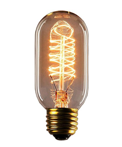 Rolay 25 Watt Clear Glass Edison Style Spiral Filament Import It All