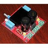 Generic YJ TDA8950 Class D 170W+170W Stereo Amplifier Board