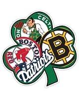 "BOSTON Fan Sport Flag Irish 4""x4"" Sticker Decal Vinyl Bruins Patriots Celtics Red Sox"