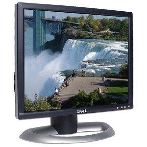 "17"" Dell 1704Fptt Dvi/Vga Lcd Monitor W/Usb (Black & Silver)"