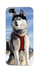 Amez designer printed 3d premium high quality back case cover for Apple iPhone SE (Husky Dog Alaska Snow)