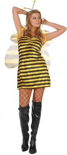 Sexy Bumble Bee Costume (Size: Small 2-4)