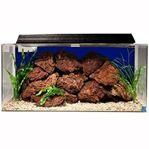 Seaclear 50 gal system ii acrylic aquarium for Does petco sell fish