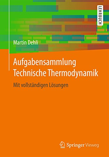 Projektmanagement im Energiebereich (German Edition)