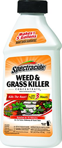 spectracide-weed-grass-killer-concentrate2-hg-66001-16-fl-oz