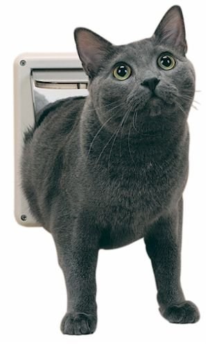 PetSafe Deluxe Locking Cat Flap Door