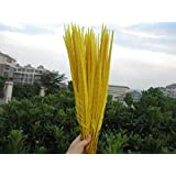 Maslin 10 Pieces of Natural Multicolor Pheasant Feather, Long 50-55cm DIY Hand Feather Decoration Stage Party Props - (Color: Yellow) (Color: yellow)