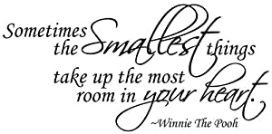 "WallStickerUSA Medium ""Sometimes smallest things take Up the most room in your heart.""-Winnie The Pooh Quote Saying Wall Sticker Decal Transfer Film 17x25 by WallStickersUSA"