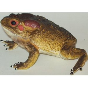 "Phil Seltzer Toad Vehicle, 4""/ Large"
