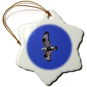 3dRose orn_37644_1 Rough Legged Hawk, Buteo Lagopus Polar Aor Arctic Prey Bird Snowflake Porcelain Ornament, 3-Inch