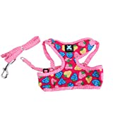 Imported Sweet Strawberry & Dots Dog Puppy Harness Leash Lead Walking Collar Rose S