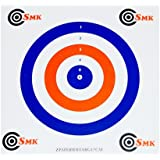 100 x Coloured Paper Air Rifle Airgun Targets Airsoft Shooting Hunting 17x17cm