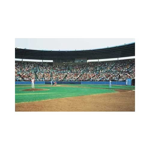 Baseball stadium field wall mural childrens for Baseball field mural