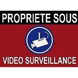 """Panneau """"propriété sous vidéo surveillance"""" 160x100mm"""