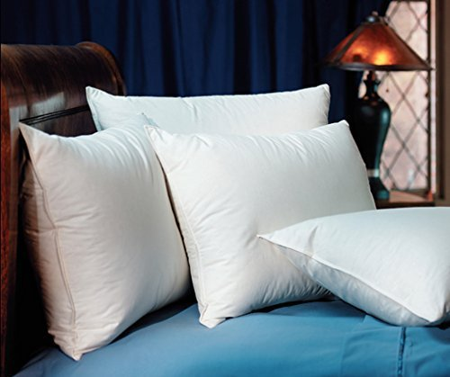 pacific-coast-double-down-surround-king-pillow-featured-in-many-ritz-carlton-hotels-by-pacific-coast