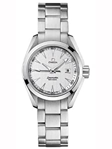 Omega Aqua Terra Silver Dial Stainless Steel Mens Watch 23110306002001