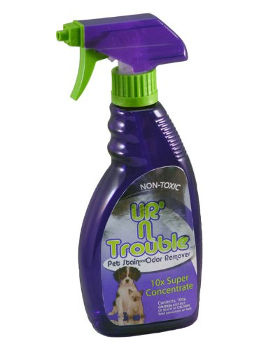 Ur'n Trouble Pet Stain and Odor Remover