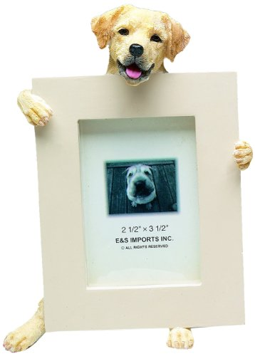 E&S Pets 35315-20A Small Dog Frame front-855370
