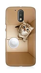 Amez designer printed 3d premium high quality back case cover for Motorola Moto G4 (Dimensional 3D Poor Kitten In Box)