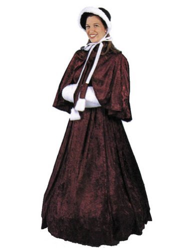 Dickens Dress Adult Womens Costume
