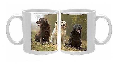 Photo Mug Of Yellow, Black And Chocolate Labradors - Sitting front-603756