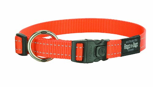 Rogz Reflective 3/4-Inch Fanbelt Dog Collar, Medium to Large, Orange