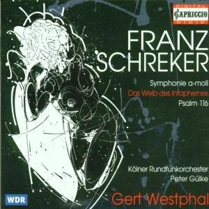 Franz Schreker - Oeuvres symphoniques 41E34rLO36L