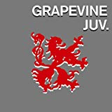 報道♪GRAPEVINEのジャケット