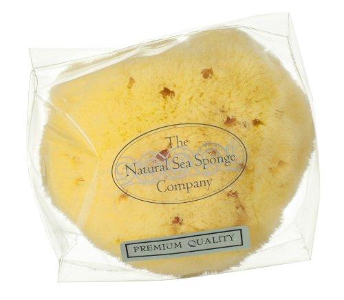 """Hydrea London Natural Honeycomb Sea Sponge 4 - 4.5"""""""