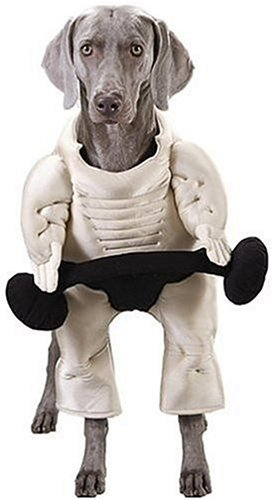 Muscle Bound Hound - Large Pet Costume