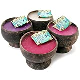Hawaiian Coconut Shell Candles