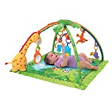 Fisher Price Rainforest Melodies Gym